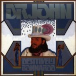 dr_john_bonnaroo