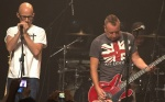 View the album Peter Hook