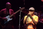 View the album Seun Kuti
