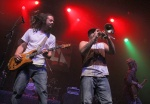 View the album Soja